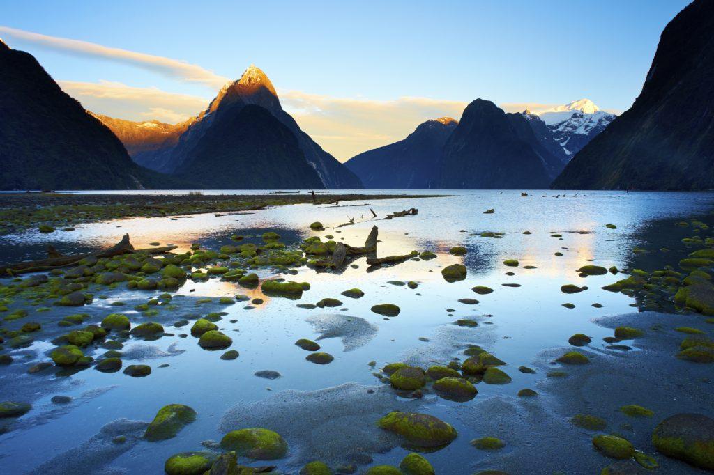 nouvelle Zélande maories