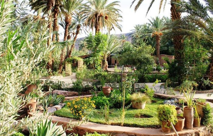nature bio maroc