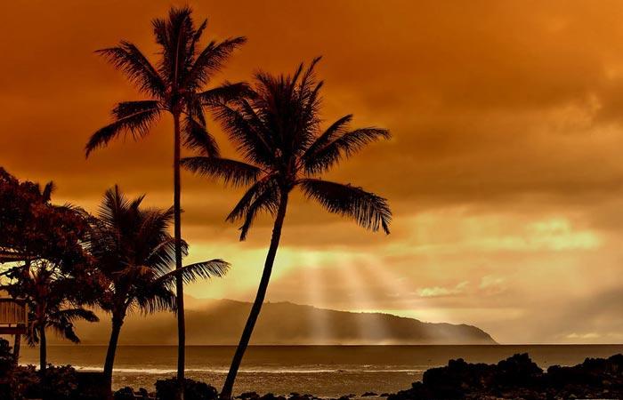 bien-être hawai