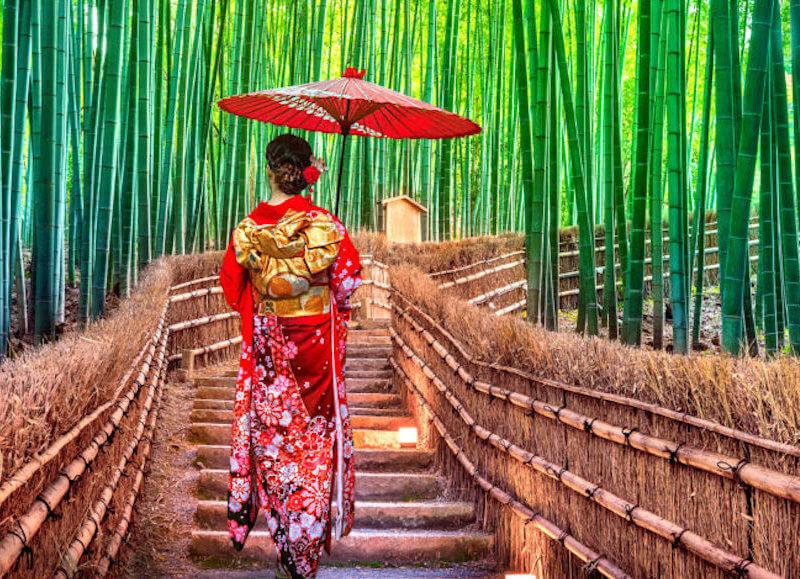 voyage-initiatique-japon